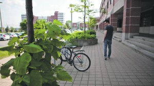 Bike thefts spike during the warmer months when cycling is more prominent. (Photo by Heather Davidson)